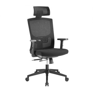 Buy Brateck-CH05-17-Brateck Ergonomic Mesh Office Chair with Headrest (655x675x1165-1265mm) Up to 150kg - Mesh Fabric