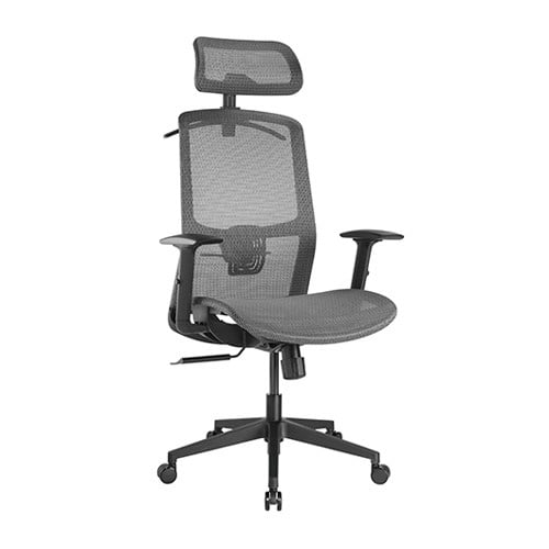 Buy Brateck-CH05-18-Brateck Ergonomic Mesh Office Chair with Headrest (655x675x1165-1265mm) Up to 150kg  - Steel Mesh